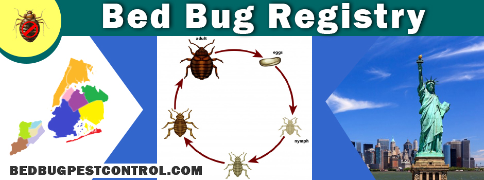 bed bug registry maps